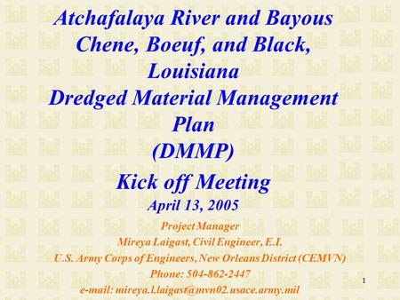 1 Atchafalaya River and Bayous Chene, Boeuf, and Black, Louisiana Dredged Material Management Plan (DMMP) Kick off Meeting April 13, 2005 Project Manager.