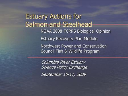 Estuary Actions for Salmon and Steelhead Columbia River Estuary Science Policy Exchange September 10-11, 2009 NOAA 2008 FCRPS Biological Opinion Estuary.