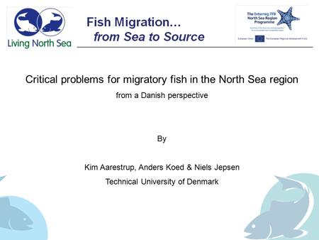 Critical problems for migratory fish in the North Sea region from a Danish perspective By Kim Aarestrup, Anders Koed & Niels Jepsen Technical University.