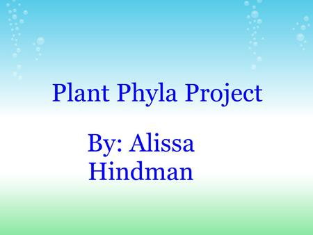 Plant Phyla Project By: Alissa Hindman.