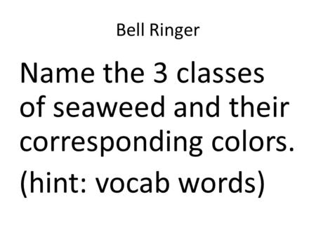 Bell Ringer Name the 3 classes of seaweed and their corresponding colors. (hint: vocab words)
