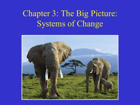 Chapter 3: The Big Picture: Systems of Change. Systems A system is a set of components or parts that function together to act as a whole. –E.g. Body,