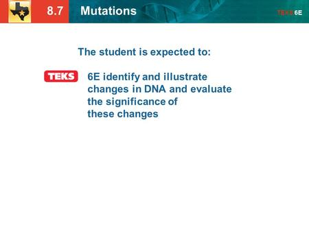 8.7 Mutations TEKS 6E The student is expected to: 6E identify and illustrate changes in DNA and evaluate the significance of these changes.