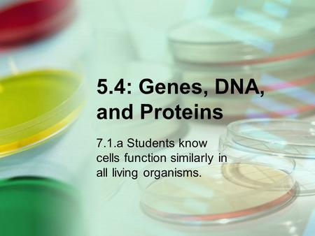 5.4: Genes, DNA, and Proteins 7.1.a Students know cells function similarly in all living organisms.