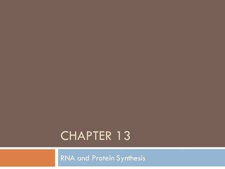 CHAPTER 13 RNA and Protein Synthesis. Differences between DNA and RNA  Sugar = Deoxyribose  Double stranded  Bases  Cytosine  Guanine  Adenine 