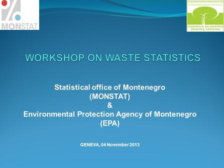 Statistical office of Montenegro (MONSTAT) & Environmental Protection Agency of Montenegro (EPA) GENEVA, 04 November 2013.