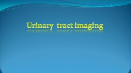 Urinary tract imaging.