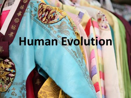 Human Evolution. Where did hominids evolve? Where do we live now?