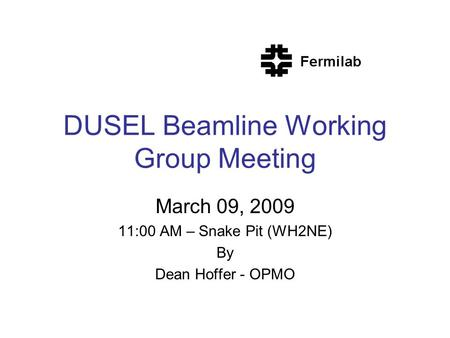 DUSEL Beamline Working Group Meeting March 09, 2009 11:00 AM – Snake Pit (WH2NE) By Dean Hoffer - OPMO.