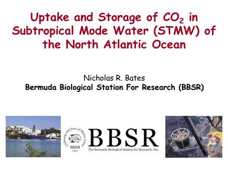 Nicholas R. Bates Bermuda Biological Station For Research (BBSR) Uptake and Storage of CO 2 in Subtropical Mode Water (STMW) of the North Atlantic Ocean.