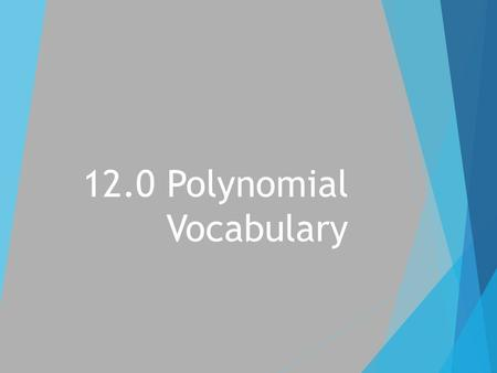 12.0 Polynomial Vocabulary. Term  Numbers or variables separated by _____ or _____ signs.  Examples:
