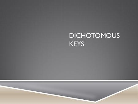 DICHOTOMOUS KEYS. WHAT IS A DICHOTOMOUS KEY?  When a biologist wants to identify a plant or animal they have found, they often use an identification.