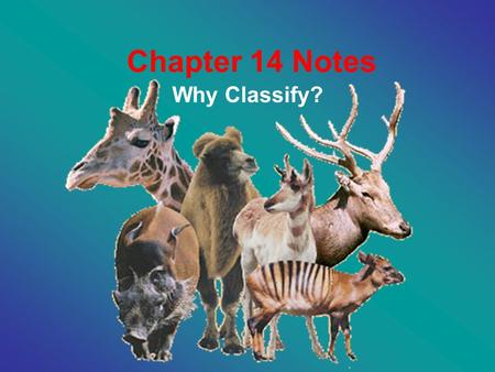 Chapter 14 Notes Why Classify?. 14.1 Categories of Biological Classification: 1. Why Classify? –Eliminate confusion –Organize information –Reveal Evolutionary.