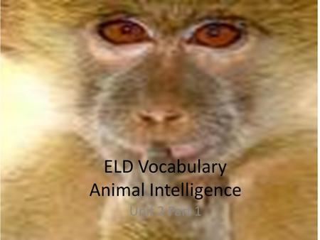ELD Vocabulary Animal Intelligence Unit 2 Part 1.