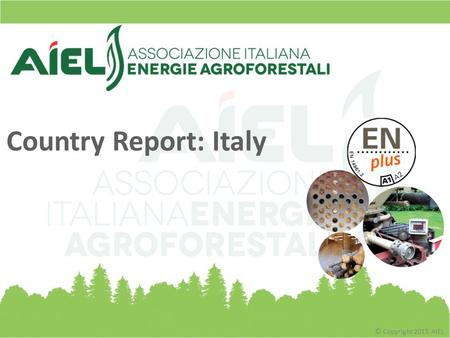 © Copyright 2015 AIEL Country Report: Italy. © Copyright 2015 AIEL About AIEL? The Italian Market from a Global Point of View The Figures of the Italian.