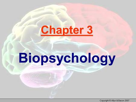 Copyright © Allyn & Bacon 2007 Chapter 3 Biopsychology.