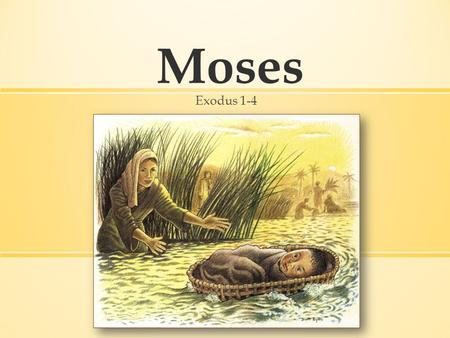 Moses Exodus 1-4. Exodus 1–4 Moses: The Early Years Exodus 5–12 10 plagues Exodus 13–15 The Red Sea Exodus 16–18 Manna, quail, and water from a.