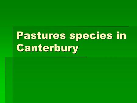 Pastures species in Canterbury. hHigh Endophyte Ryegrass  The endophyte fungus provides resistance to various insect pests, particularly Argentine stem.