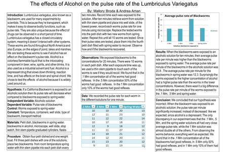 The effects of Alcohol on the pulse rate of the Lumbriculus Variegatus By: Mallory Broda & Andrea Aman Introduction : Lumbriculus variegatus, also known.