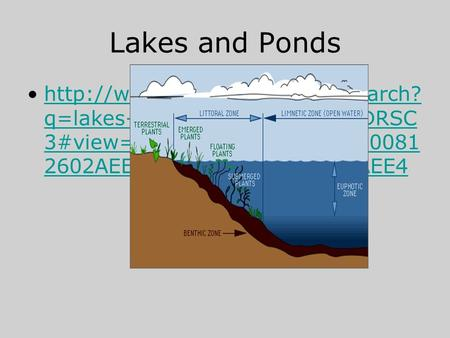 Lakes and Ponds  q=lakes+and+ponds&FORM=HDRSC 3#view=detail&mid=A8C9DDEE0081 2602AEE4A8C9DDEE00812602AEE4http://www.bing.com/videos/search?