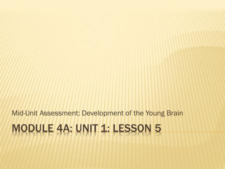 Mid-Unit Assessment: Development of the Young Brain.