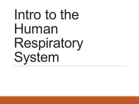 Intro to the Human Respiratory System