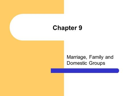 Chapter 9 Marriage, Family and Domestic Groups. Chapter Questions What are some of the universal functions of marriage and the family? What are some of.