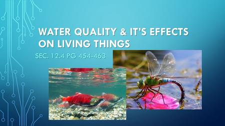 WATER QUALITY & IT'S EFFECTS ON LIVING THINGS SEC. 12.4 PG 454-463.