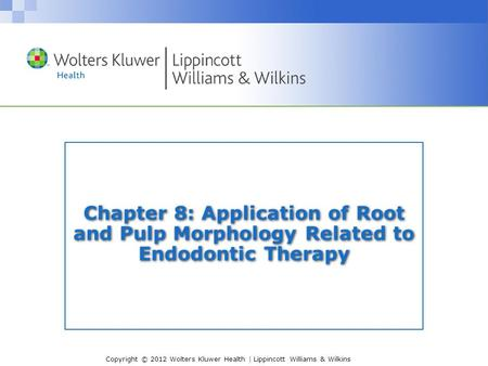 Copyright © 2012 Wolters Kluwer Health | Lippincott Williams & Wilkins Chapter 8: Application of Root and Pulp Morphology Related to Endodontic Therapy.