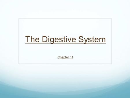 The Digestive System Chapter 11. Introduction to Digestive System AKA: Digestive tract, gastrointestinal tract, GI tract, Alimentary canal, gut System.