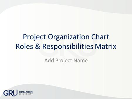 Project Organization Chart Roles & Responsibilities Matrix Add Project Name.