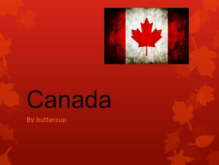 Canada By buttercup. introduction  Hello my name is buttercup.  I am going to do a project on Canada.  Hope you enjoy.