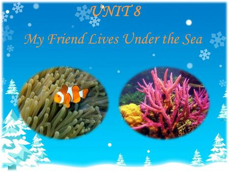 UNIT 8 My Friend Lives Under the Sea. Vocabulary coral n. 珊瑚 seaweed n. 海草 grocery n. 食品雜貨 submarine n. 潛水艇 input v. 輸入 underwater adj. 水中的 coral reef.