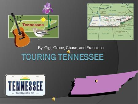 By. Gigi, Grace, Chase, and Francisco Information on Tennessee  Tennessee is the volunteer state. Some state symbols are the flower witch is the iris.