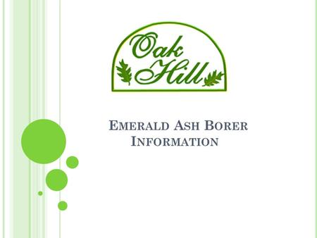 E MERALD A SH B ORER I NFORMATION. Emerald Ash Borer Agenda EAB Overview Review Oak Hill Inventory Oak Hill Plans for Common Area Trees Treatment Options.