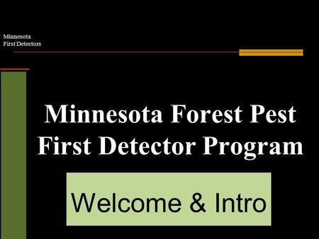 Minnesota First Detectors Minnesota Forest Pest First Detector Program Welcome & Intro.