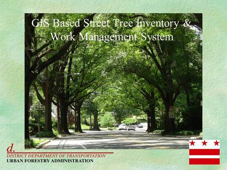 GIS Based Street Tree Inventory & Work Management System.