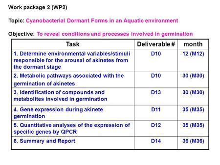 Work package 2 (WP2) Topic: Cyanobacterial Dormant Forms in an Aquatic environment Objective: To reveal conditions and processes involved in germination.