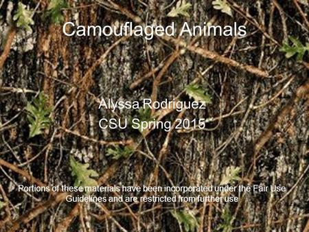 Camouflaged Animals Alyssa Rodriguez CSU Spring 2015 Portions of these materials have been incorporated under the Fair Use Guidelines and are restricted.