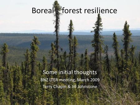 Boreal forest resilience Some initial thoughts BNZ LTER meeting, March 2009 Terry Chapin & Jill Johnstone.