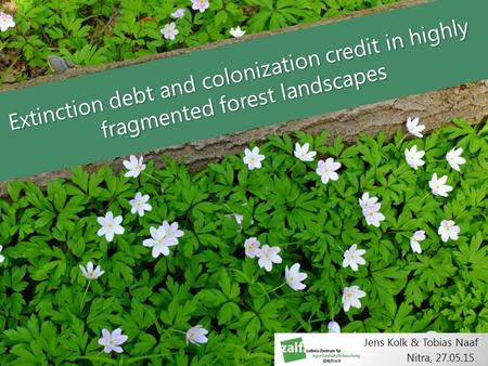 Extinction debt and colonization credit in highly fragmented forest landscapes Nitra, 27.05.15 Jens Kolk & Tobias Naaf.