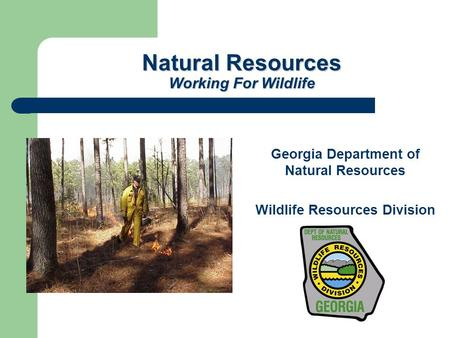 Natural Resources Working For Wildlife Georgia Department of Natural Resources Wildlife Resources Division.