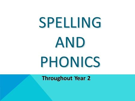 SPELLING AND PHONICS Throughout Year 2. VOCABULARY We use the correct terminology with the children right from reception. It may sound complicated but.