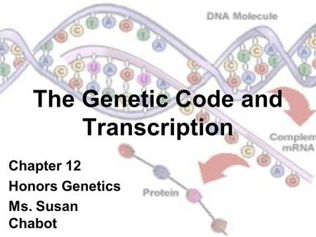 The Genetic Code and Transcription Chapter 12 Honors Genetics Ms. Susan Chabot.