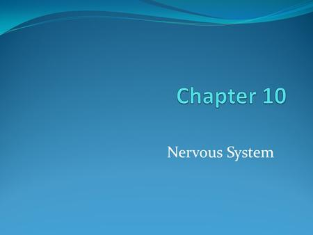 Nervous System. Divisions of the Nervous System Central nervous system (CNS) Central nervous system (CNS) Consists of brain and spinal cord Peripheral.