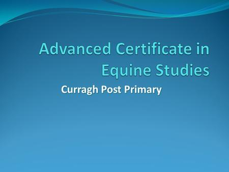 Curragh Post Primary. Curragh Post Primary Horsemanship Courses These courses are aimed at Post Leaving Certificate students who wish to gain specific.