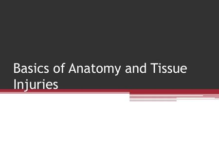 Basics of Anatomy and Tissue Injuries. Anatomical Position Anatomic Position: Refers to an erect stance with the arms at the sides and the palms of the.