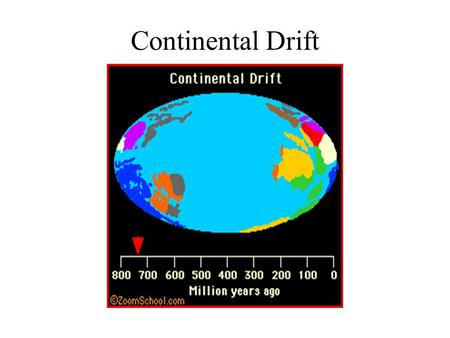 Continental Drift. Continental Drift Theory Most other scientists did not feel Wegener's theory was true. That was because Wegener couldn't come up with.