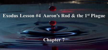 Exodus Lesson #4 Aaron's Rod & the 1 st Plague Chapter 7.