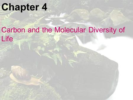 Chapter 4 Carbon and the Molecular Diversity of Life.